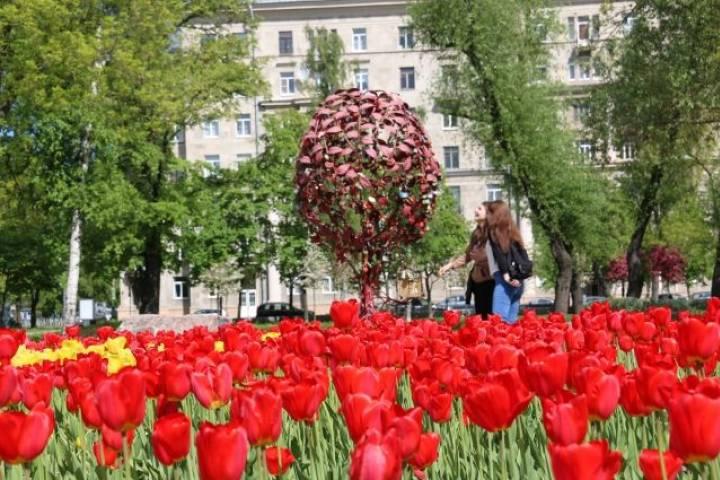 Украсить Москву цветами сможет каждый желающий