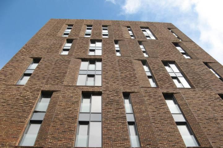 Около 250 домов в новейшей столицеРФ могут включить впрограмму реновации