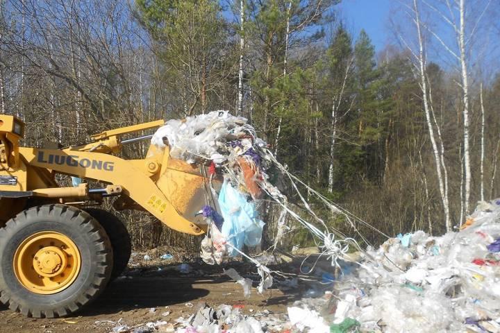 Впроцессе мартовской операции «Весенний мусор» вПодмосковье выявили 877 нарушений