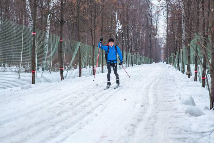 Семь парков столицы получат 25 километров всепогодных лыжных трасс