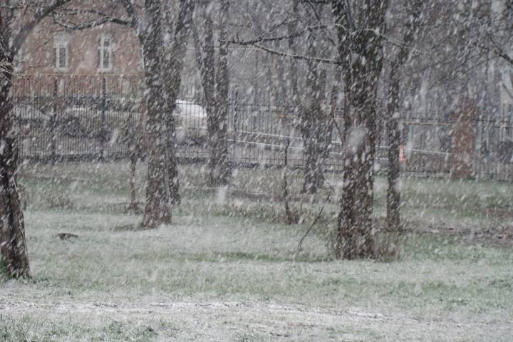 Вчетверг синоптики прогнозируют в российской столице обильные снегопады